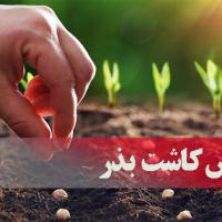 آموزش کاشت بذر