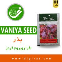 بذر افراروبروم قرمز آذر سبزینه