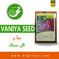 بذر گل سنگ پاکان بذر اصفهان