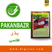 بذر گل اطلسی پاکان بذر اصفهان