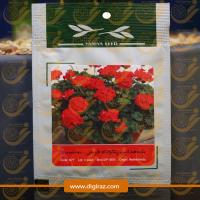 بذر شمعدانی پاکوتاه قرمز آذر سبزینه