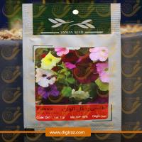 بذر گل اطلسی پر گل آذر سبزینه